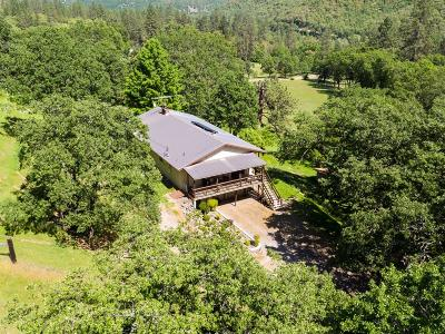 Jackson County, Josephine County Single Family Home For Sale: 12964 Highway 234