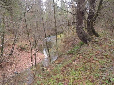 Merlin, Sunny Valley, Wimer, Rogue River, Wilderville, Grants Pass Residential Lots & Land For Sale: Pleasant Creek Road