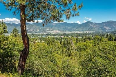 Grants Pass Single Family Home For Sale: 300 Sky Way