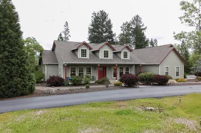 Jackson County, Josephine County Single Family Home For Sale: 3993 Rogue River Drive