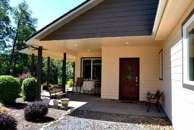 Grants Pass Single Family Home For Sale: 1095 Ingalls Lane