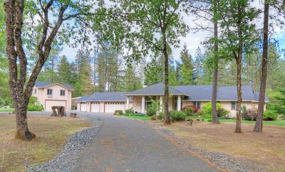 Merlin, Sunny Valley, Wimer, Rogue River, Wilderville, Grants Pass Single Family Home For Sale: 1323 Wildflower Drive