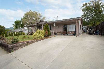 Merlin, Sunny Valley, Wimer, Rogue River, Wilderville, Grants Pass, Murphy, Wolf Creek, Hugo, Wonder Single Family Home For Sale: 1062 NE Churchill Street