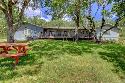 Jackson County, Josephine County Single Family Home For Sale: 16565 Shiloh Road
