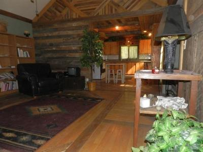 Jackson County, Josephine County Single Family Home For Sale: 425 Murphy Gulch Road