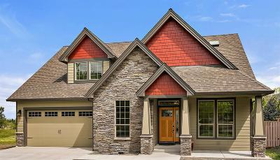 Jackson County, Josephine County Single Family Home For Sale: 415 W Nevada Street