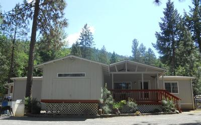 Grants Pass Single Family Home For Sale: 5243 Rogue River Hwy