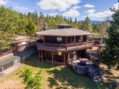 Grants Pass Single Family Home For Sale: 4121 New Hope Road