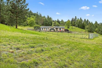 Jackson County, Josephine County Single Family Home For Sale: 6350 Sterling Creek Road