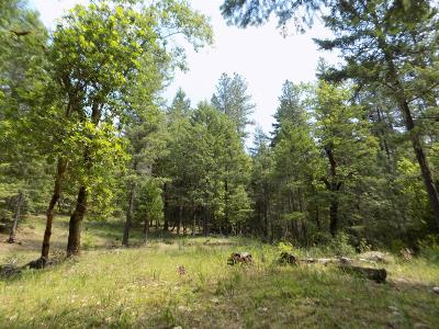 Merlin, Sunny Valley, Wimer, Rogue River, Wilderville, Grants Pass Residential Lots & Land For Sale: Ditch Creek Lot 201 Road