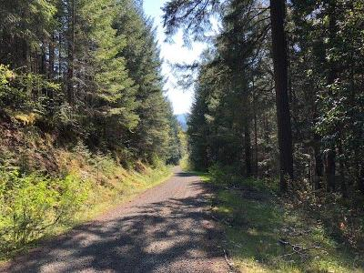 Josephine County Residential Lots & Land For Sale: Stratton Creek Road