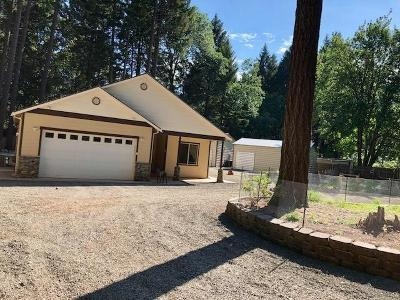 Cave Junction Single Family Home For Sale: 356 Madrona Drive