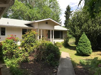 Grants Pass Single Family Home For Sale: 1340 Fruitdale Drive