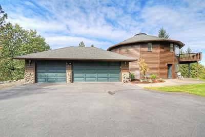 Grants Pass Single Family Home For Sale: 398 SW Madrone Ridge Drive
