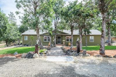 Eagle Point Single Family Home For Sale: 4108 Reese Creek Road