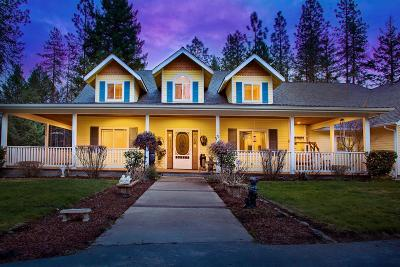 Grants Pass Single Family Home For Sale: 1065 Riessen Road