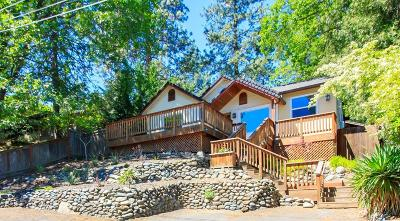 Ashland Single Family Home For Sale: 261 Meade Street