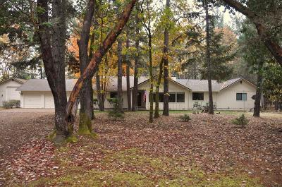 Single Family Home For Sale: 233 Northwoods Drive