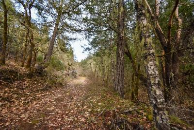 Wilderville Residential Lots & Land For Sale: 12500 Redwood Highway