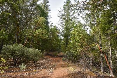 Josephine County Residential Lots & Land For Sale: 300 Taylor Creek Road