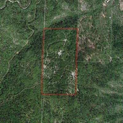 Rogue River Residential Lots & Land For Sale: Foots Creek Road