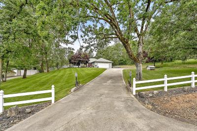 Rogue River Single Family Home For Sale: 33 Lillie Mae Lane