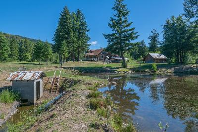 Rogue River Single Family Home For Sale: 9 Upper Grave Creek Road