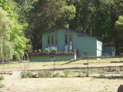 Jackson County, Josephine County Single Family Home For Sale: 14326 E Evans Creek Road