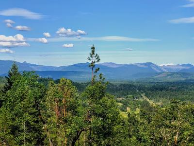 Jackson County, Josephine County Residential Lots & Land For Sale: 1 Hwy 62