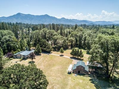 Jackson County, Josephine County Single Family Home For Sale: 1725 Pleasant Creek Road
