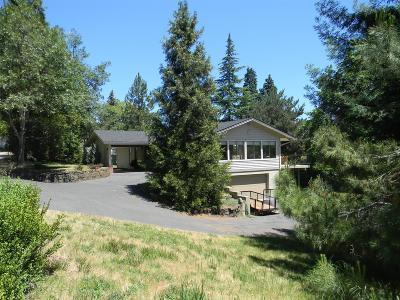 Ashland Single Family Home For Sale: 44 Scenic Avenue