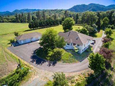 Gold Hill Single Family Home For Sale: 295 Foots Creek Road