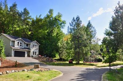 Merlin, Sunny Valley, Wimer, Rogue River, Wilderville, Grants Pass Farm For Sale: 393 S&K Ranch Road