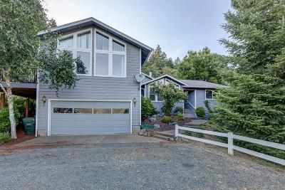Rogue River Single Family Home For Sale: 3939 E Evans Creek Road