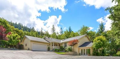 Rogue River Single Family Home For Sale: 1700 E Evans Creek Road
