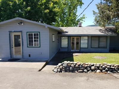 Merlin, Sunny Valley, Wimer, Rogue River, Wilderville, Grants Pass, Hugo, Wolf Creek, Murphy Single Family Home For Sale: 3145 Helms Road