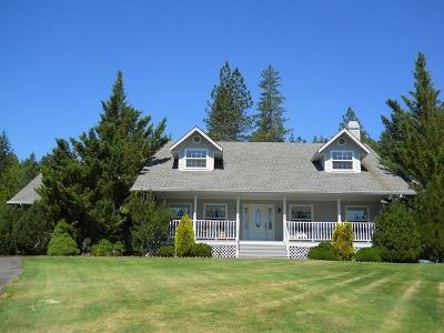 Rogue River Single Family Home For Sale: 3868 Bear Branch Road
