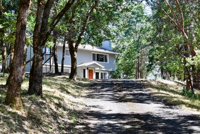Jackson County, Josephine County Single Family Home For Sale: 310 Mary Ann Drive