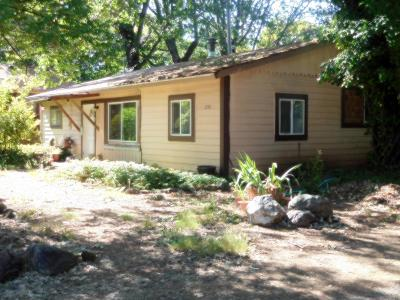 Cave Junction Single Family Home For Sale: 234 W River Street