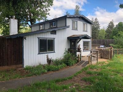 Rogue River Single Family Home For Sale: 8175 W Evans Creek Road