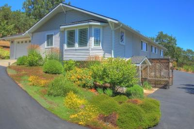 Medford Single Family Home For Sale: 4690 Pioneer Road