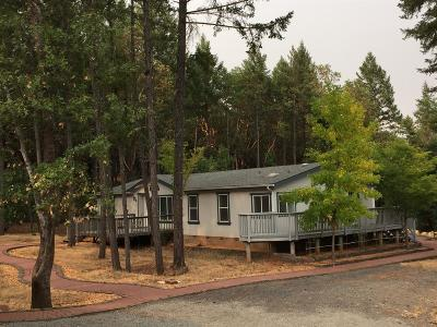 Josephine County Single Family Home For Sale: 8396 Riverbanks Road