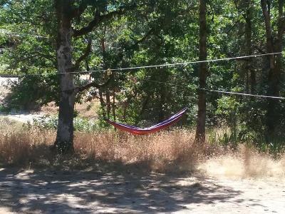 Merlin, Sunny Valley, Wimer, Rogue River, Wilderville, Grants Pass, Murphy, Wolf Creek, Hugo Single Family Home For Sale: 161 Hansen Drive