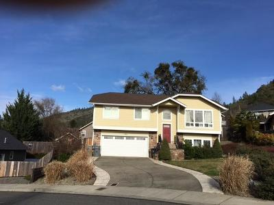 Merlin, Sunny Valley, Wimer, Rogue River, Wilderville, Grants Pass, Murphy, Wolf Creek, Hugo, Wonder Single Family Home For Sale: 1462 NE Elizabeth Place