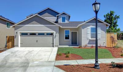 Medford Single Family Home For Sale: 3775 Sidney Way