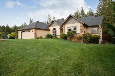 Merlin, Sunny Valley, Wimer, Rogue River, Wilderville, Grants Pass Single Family Home For Sale: 449 Espey Road