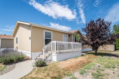Medford Mobile Home For Sale: 10 E South Stage Road #24
