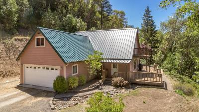 Jackson County, Josephine County Single Family Home For Sale: 8121 Rogue River Highway