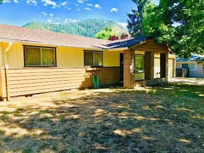 Merlin, Sunny Valley, Wimer, Rogue River, Wilderville, Grants Pass, Hugo, Wolf Creek, Murphy Single Family Home For Sale: 1325 SE Waterman