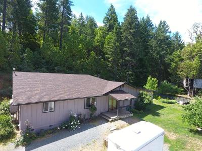Jackson County, Josephine County Single Family Home For Sale: 155 Kerby Mainline Road